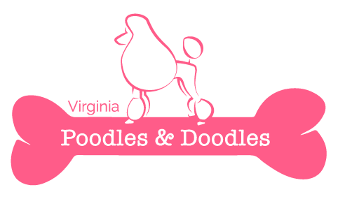 Virginia Poodles and Doodles